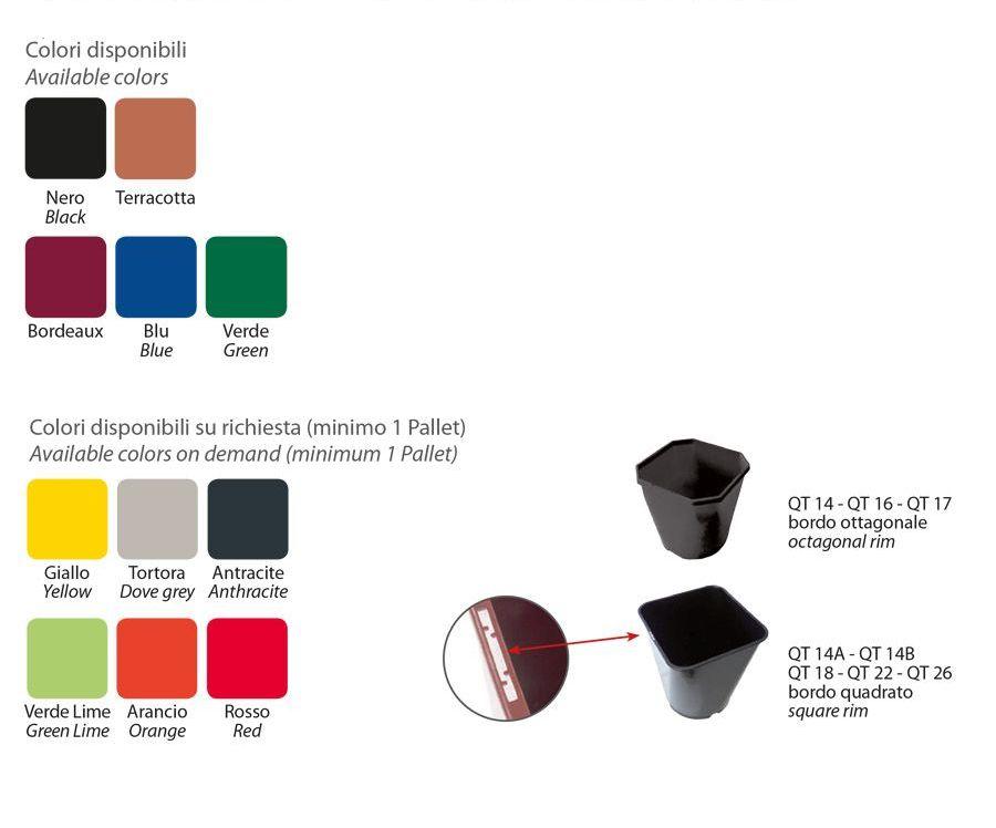 Orsa colori - Nuova Pasquini & Bini