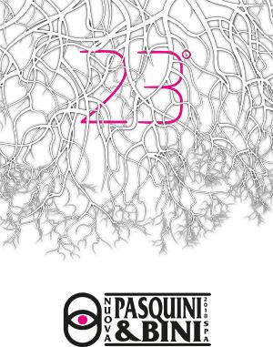 Scarica PDF catalogo 23 Pasquini & Bini